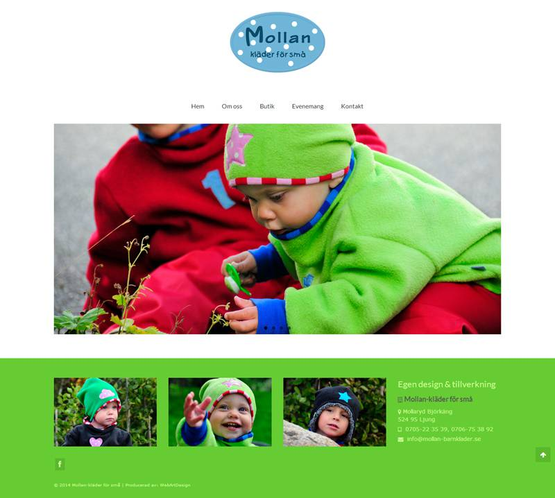 mollan wordpress